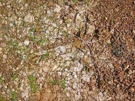 marklapp för bakgrund eller konsistens foto