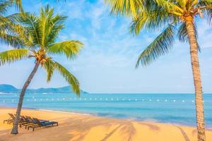 vacker strand och hav med palmträd