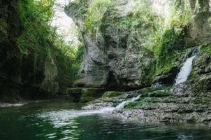 litet vattenfall i en skog