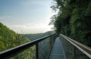 upphängande metallbro över träd