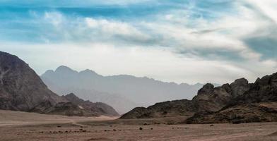 öken med steniga berg i Egypten foto