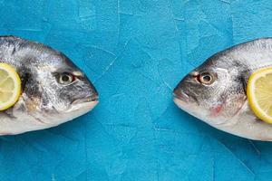 platt låg fisk på blå bakgrund foto