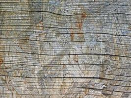 närbild av träpanelen för bakgrund eller konsistens foto