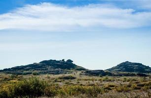 stenberg och blå himmel med vita moln foto