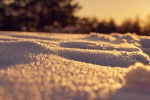 snö i solljus foto