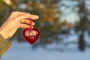 hand som håller ett rött hjärta foto