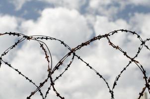 taggtråd och himmel foto