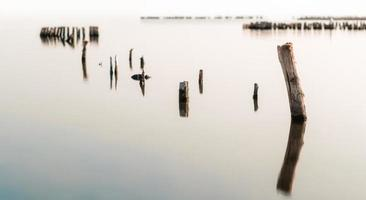 lugnt vatten och träpelare