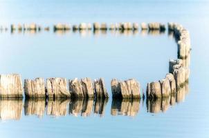 grupp av trästolpar i vattnet