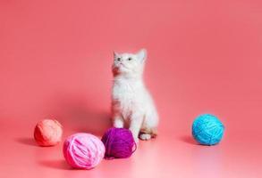 vit kattunge med bollar av garn