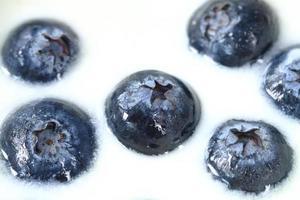 blåbär i färsk yoghurt