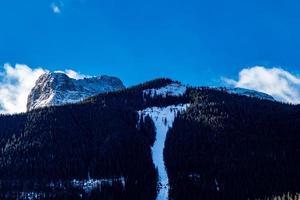 berg med träd och snö på sig foto