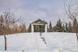 snöig park under dagen foto