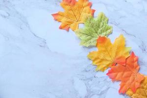 höstlönnlöv isolerad på vit bakgrund foto