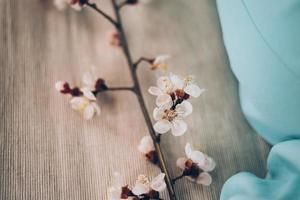 aprikos blommar på trä foto