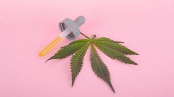 cannabisblad och pipett med thc på en rosa bakgrund foto