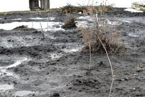 vårpölar och vatten på dachas land foto
