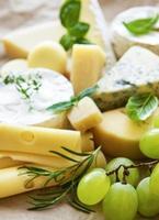 olika typer av ost, basilika och druvor foto