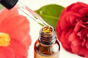 Camellia eterisk olja på nära håll av en pipett bärnstensfärgad flaska och camellia blommor i bakgrunden foto