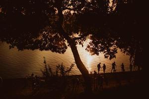 avkoppling på stranden, fantastisk solnedgång, solnedgång nära vattnet, solnedgång kastade träden människor nära vattnet, människor nära solnedgången foto