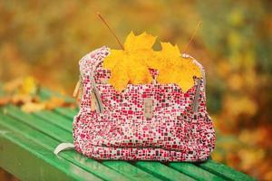 skolryggsäck på en parkbänk med löv med två gula lönnlöv foto