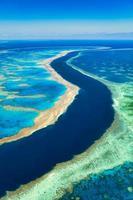 stort barriärrev i Queensland Australia foto