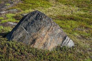 stor sten i ett grönt fält i Ryssland foto