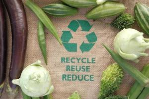återvinna koncept med grönsaker foto