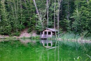 en stuga vid en sjö omgiven av träd i Yalta, Krim foto