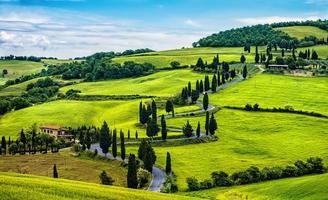 kurvig väg med träd och kullar i Toscana foto
