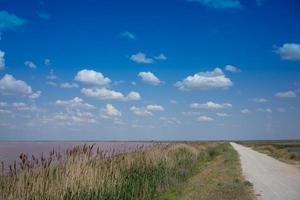 grusväg och fält bredvid sjön sasyk-sivash med en molnig blå himmel på krim foto