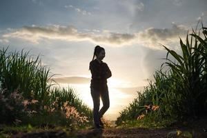 bonde kvinna silhuett står i sockerrör plantage i kväll solnedgång foto