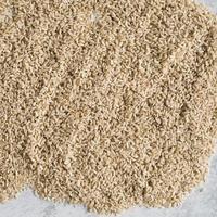 hög av brunt ris foto