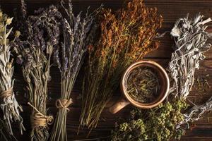 platt låg kopp örtte med växter foto
