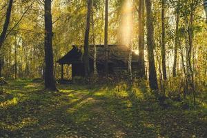 stuga i en skog foto