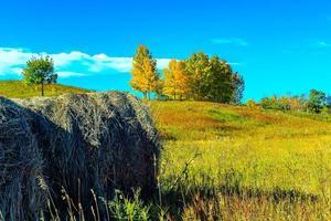 höstsikt av ett landskap foto