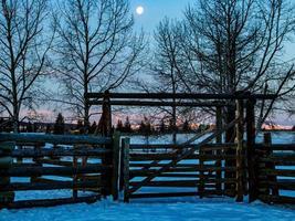 staket och vinterlandskap foto