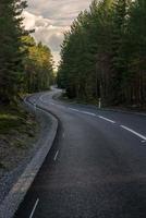 böjd väg genom en tallskog foto