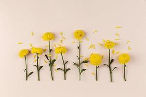 platt låg blommor samling på bordet foto