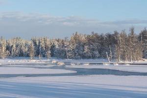 vackert vinterlandskap över en sjö foto