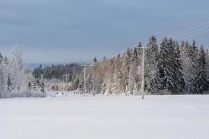 kraftledningar som korsar ett vinterlandskap i sverige foto