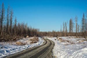 väg genom ett vinterlandskap foto