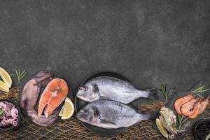 arrangemang av olika typer av fisk med kopieringsutrymme foto