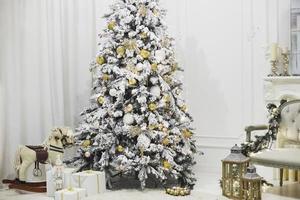 julgran i vardagsrummet foto