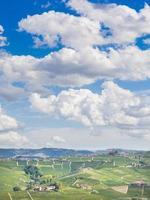 vingårdar och kullar på hösten foto