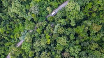 Flygfoto ovanifrån bil som kör genom skogen på landsväg, vy från drönare foto