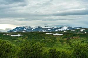grönt fält med snöiga berg foto