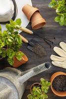 trädgårdsredskap och vattenkanna foto