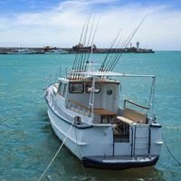 vit yacht med fiskespön på bakgrunden av marinmålningen foto
