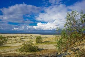 havslandskap i Östersjön med kustnära sanddyner i det kuriska spottet. foto